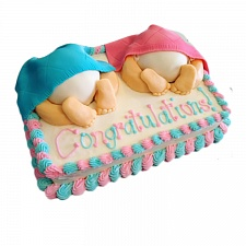0026604_twins_baby_cake_385